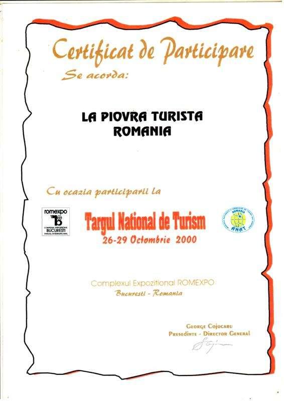 TNT 2000_SITE