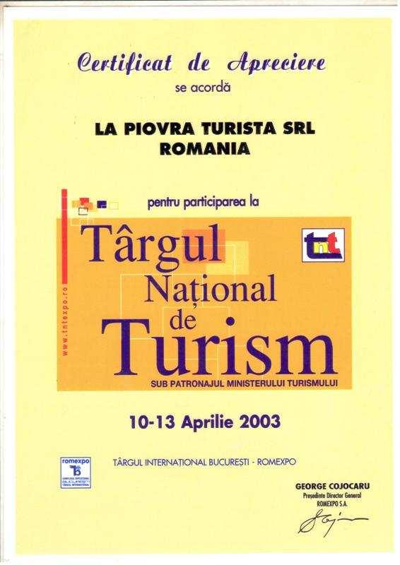 TNT 2003_SITE